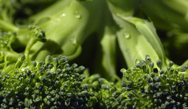 EFSA establece valores de referencia para la vitamina K